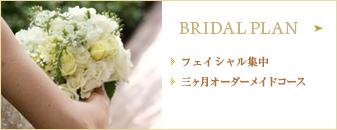 Bridal Plan